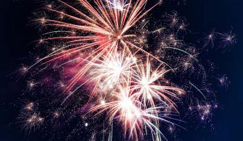 Top tips for keeping pets calm through fireworks season
